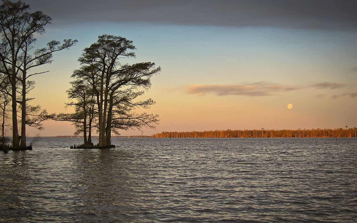 Top North Carolina Attractions Albemarle Sound