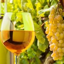 North Carolina wine getaways