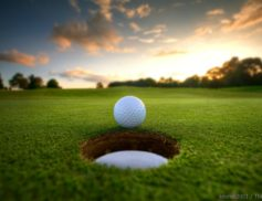 Enjoy playing golf at the Scotch Hall Preserve