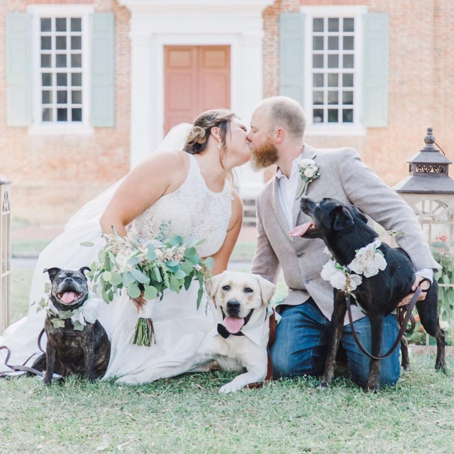 Pet friendly wedding couple